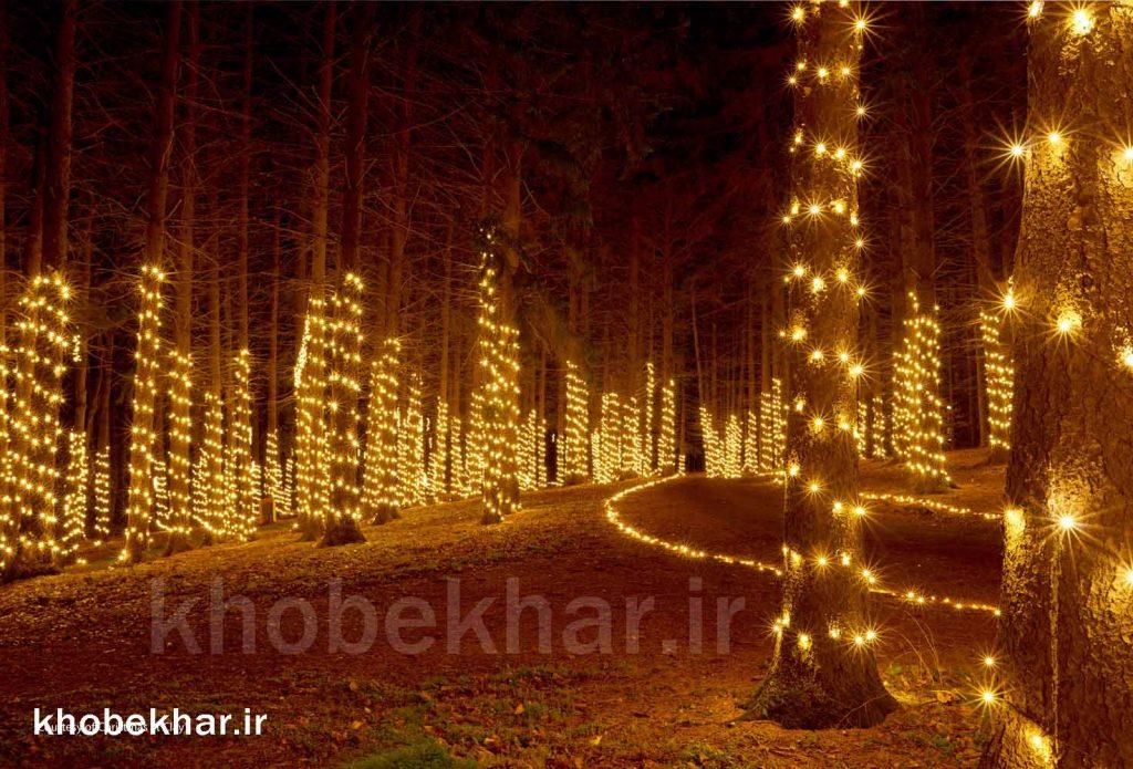 ریسه برای نورپردازی درختان