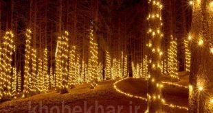 ریسه برای نورپردازی فضای باز (تونل نور و درختان)